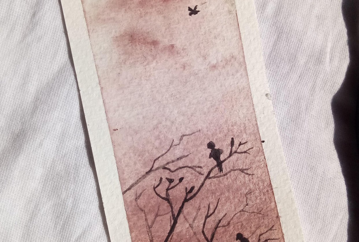 Silhouette birds - student project