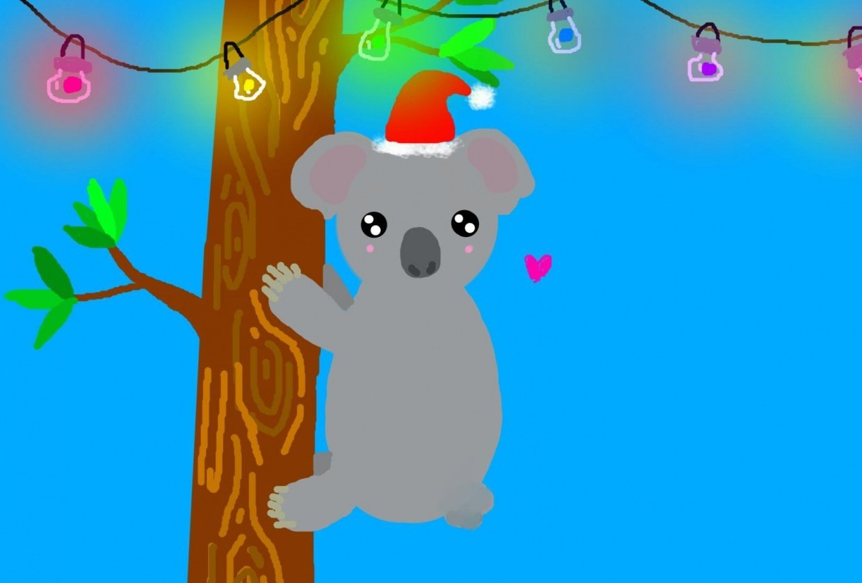 christmas in summer with koalas !! - student project