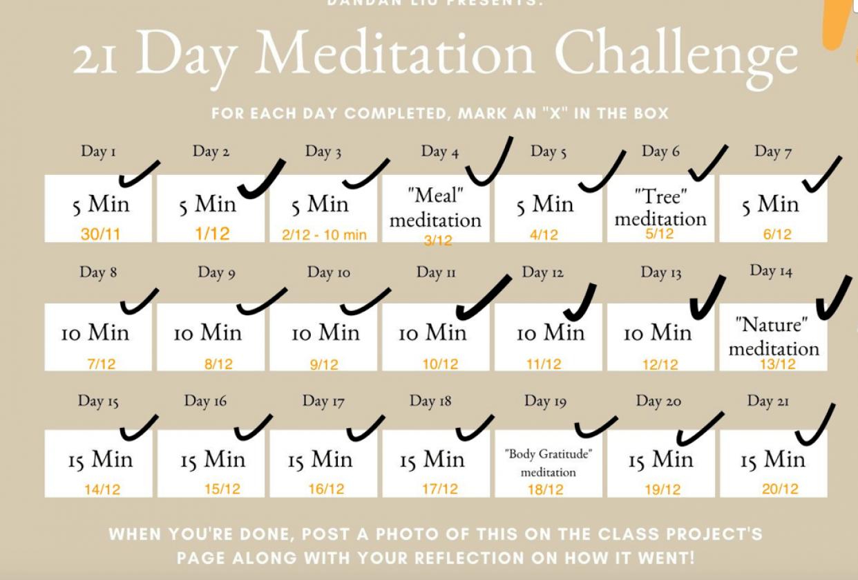 my 101 meditation journey :) - student project