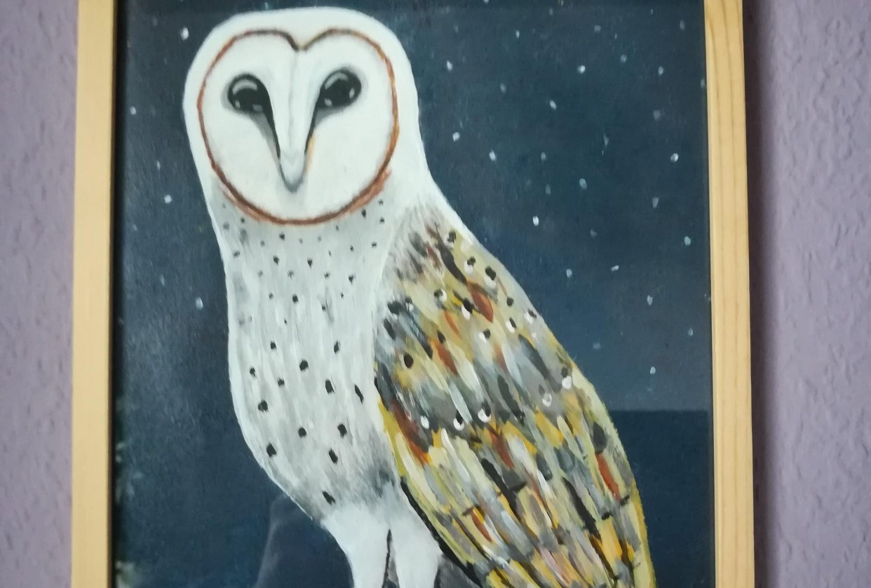 Night Owl - student project