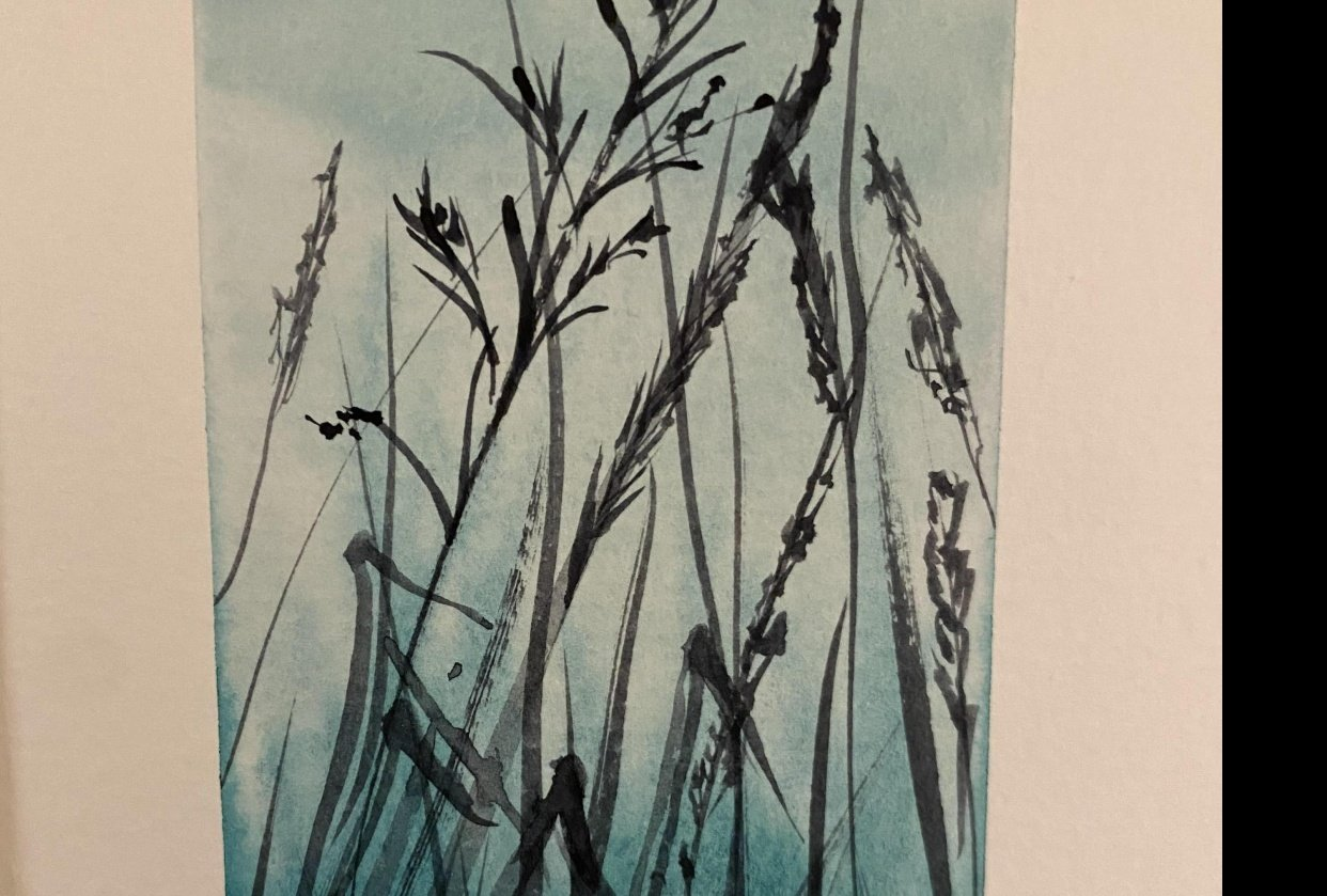Grasses Silhouette - student project