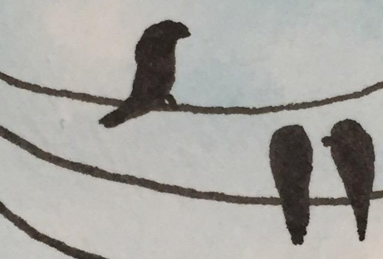 Birds on wire - student project
