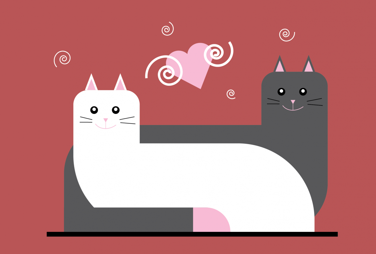 Cats Love - student project