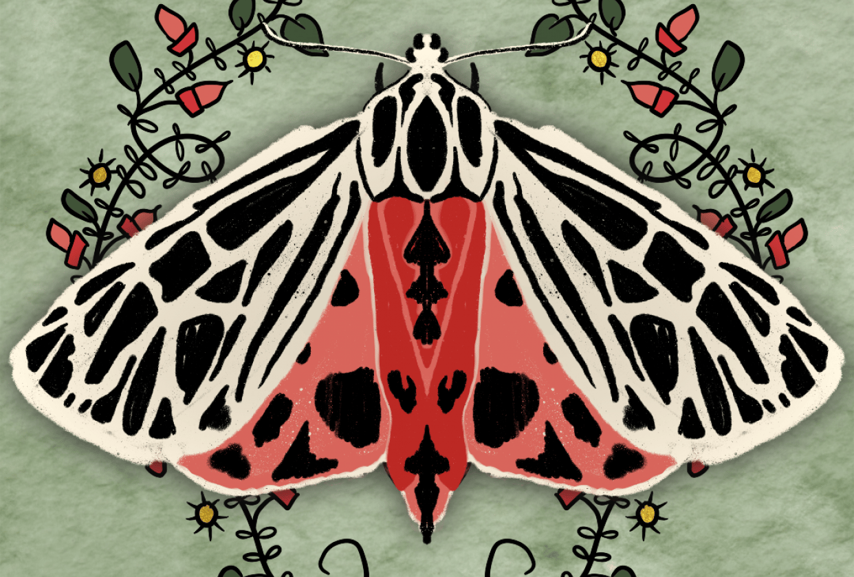 Believe Moth - student project