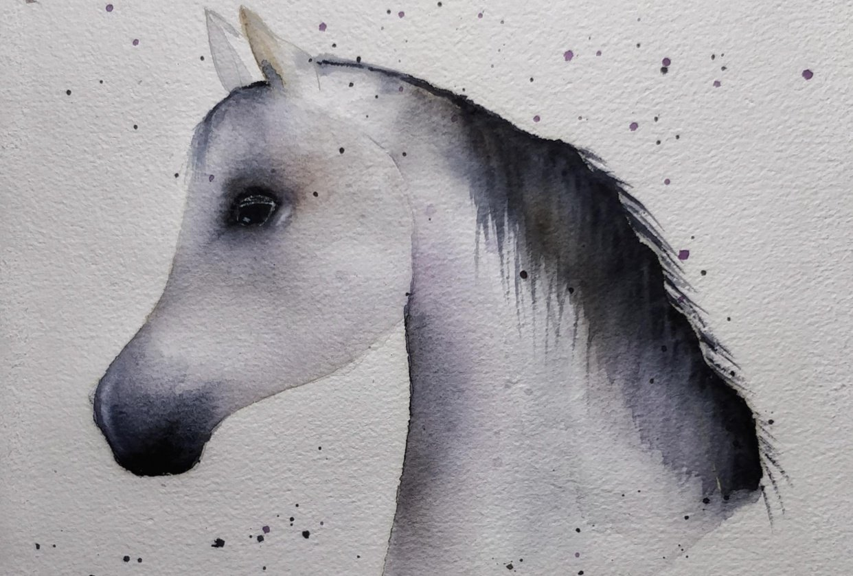 An Arabian Horse - student project