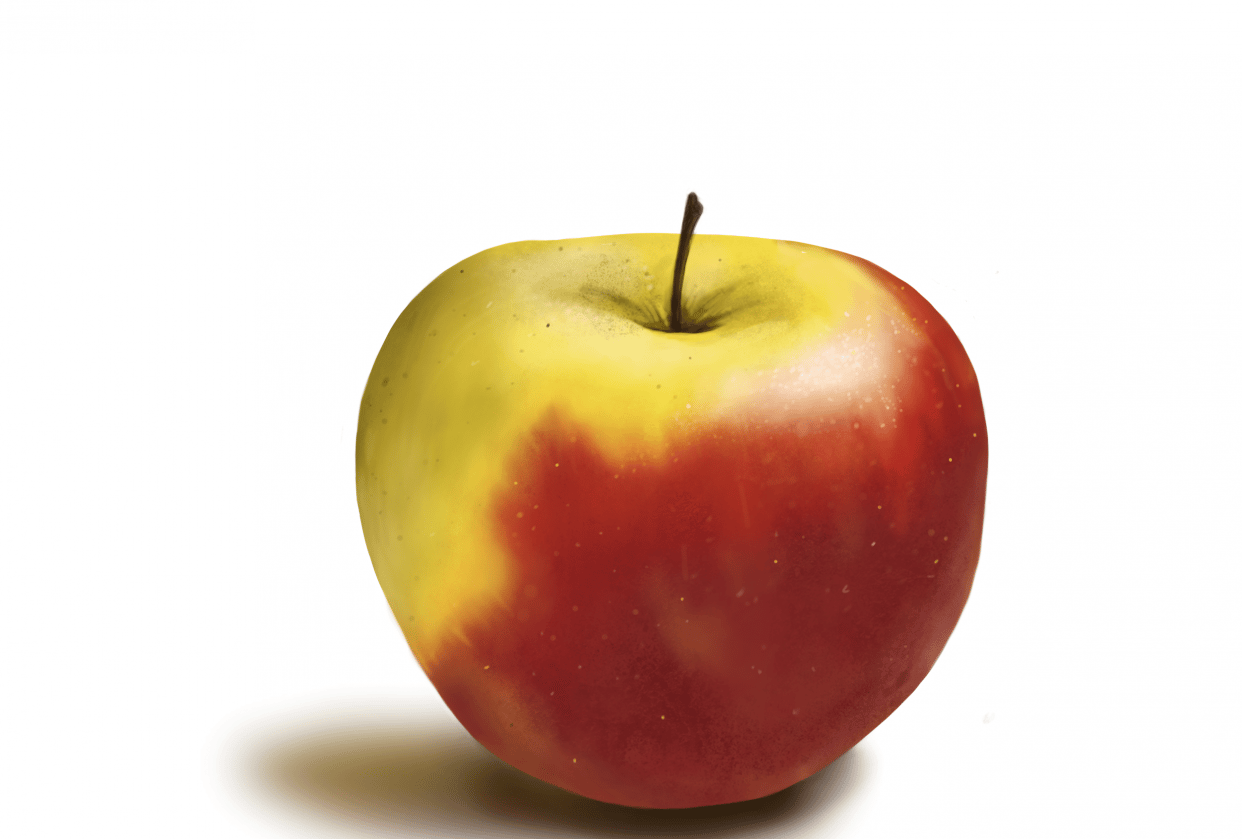 Amy's Apple - student project