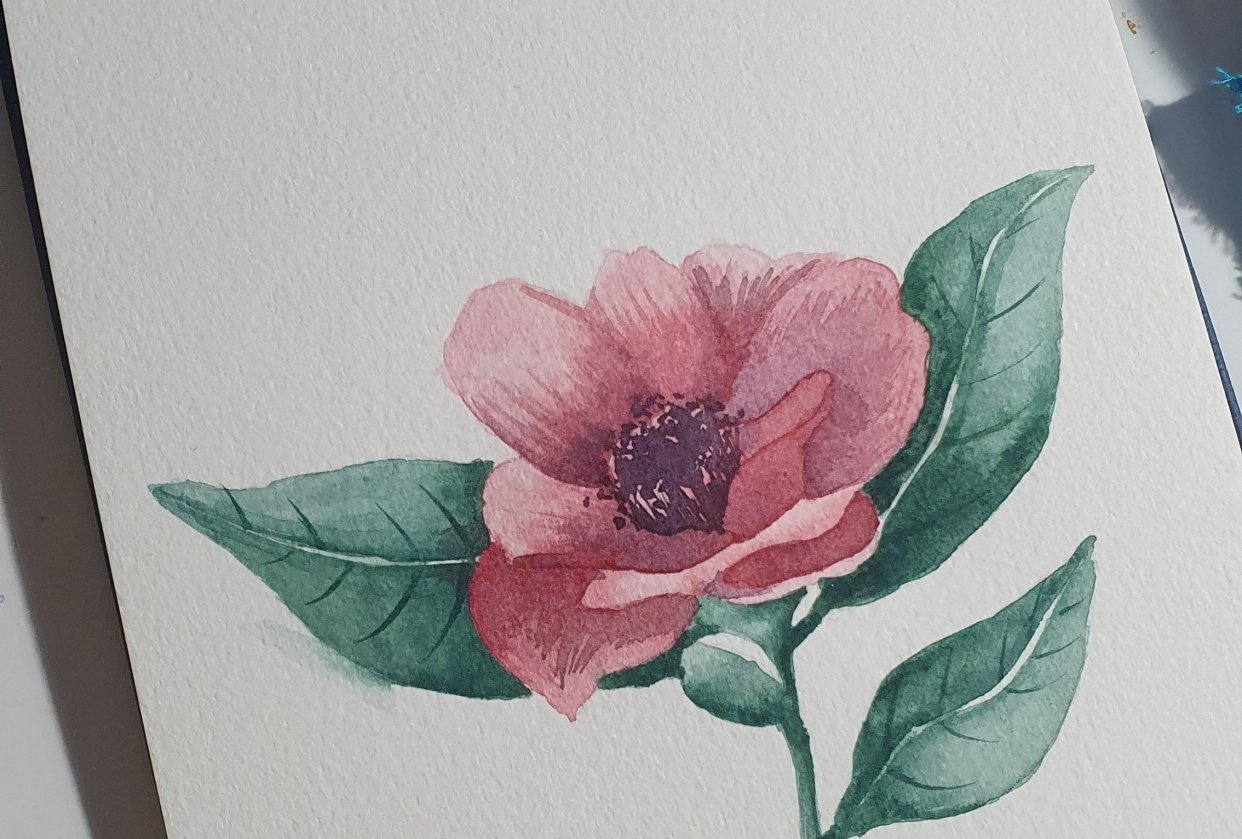Pink flower - student project