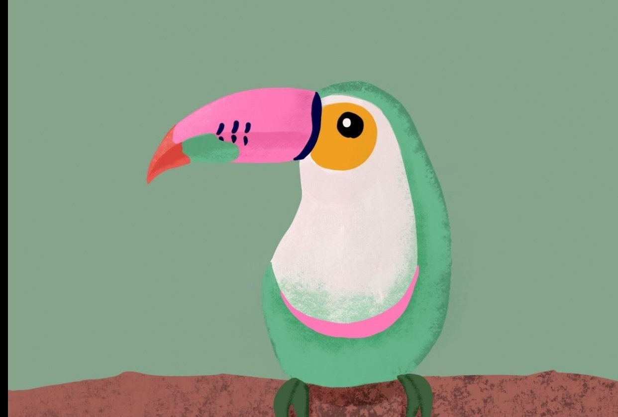 Pink Tucan - student project