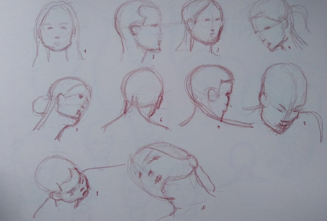 Drawing the head 1 - student project