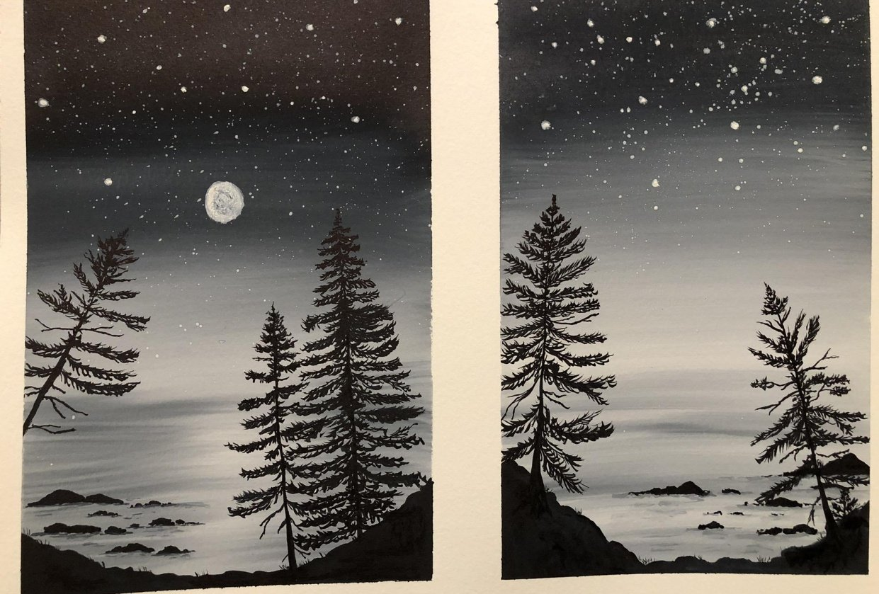 Ocean and pine trees - student project