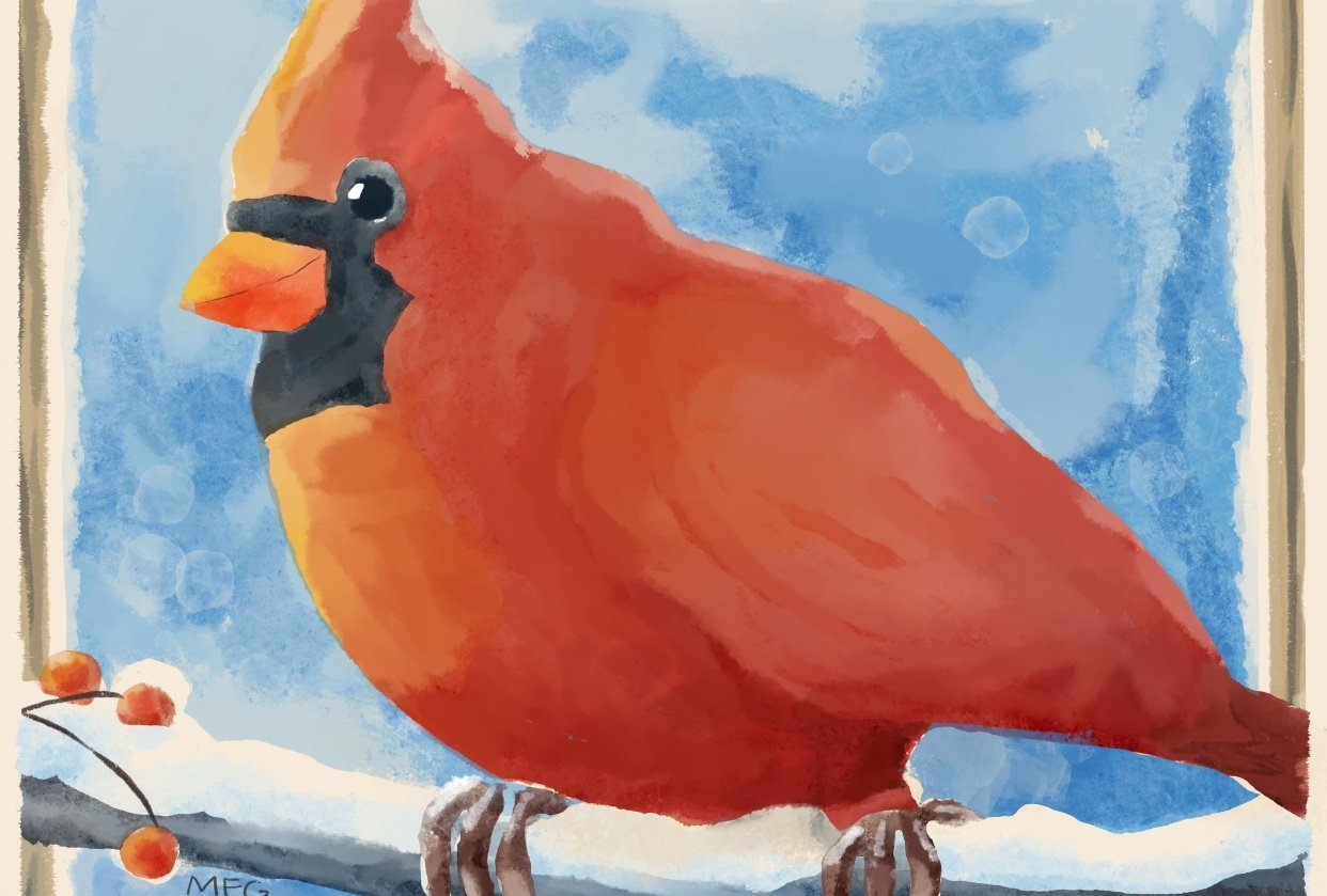 Watercolor Red Bird - student project