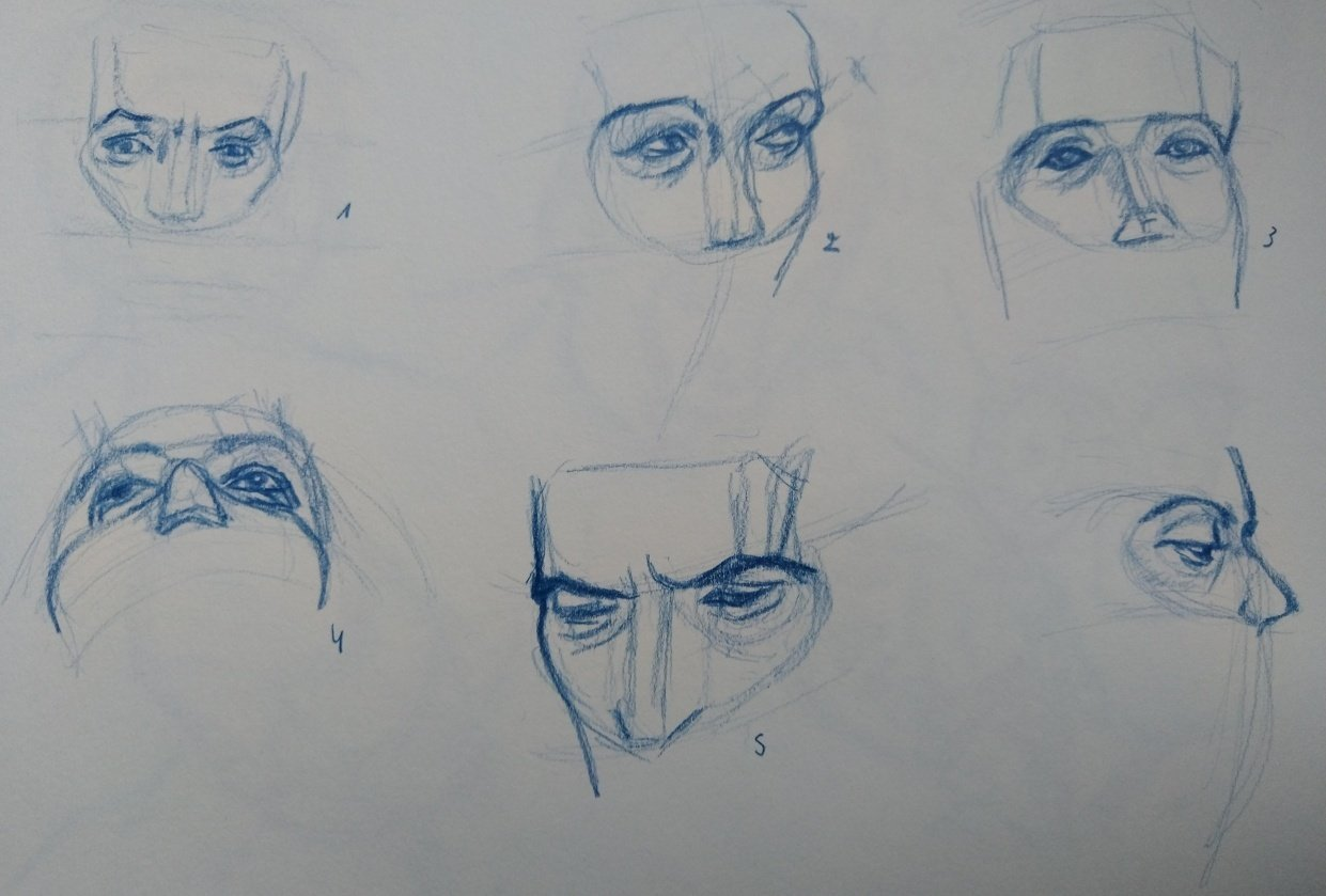Drawing the head 2 - student project