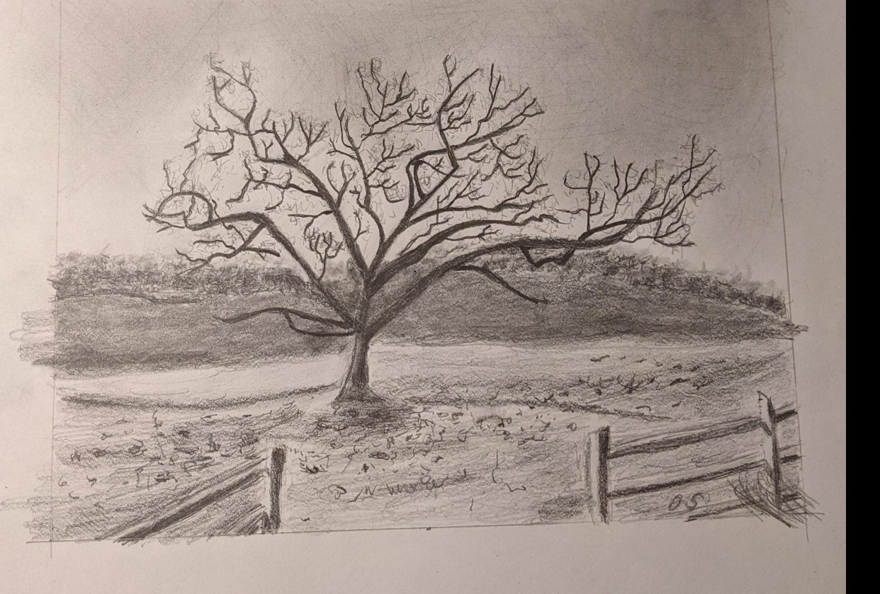 Graphite Tree - student project