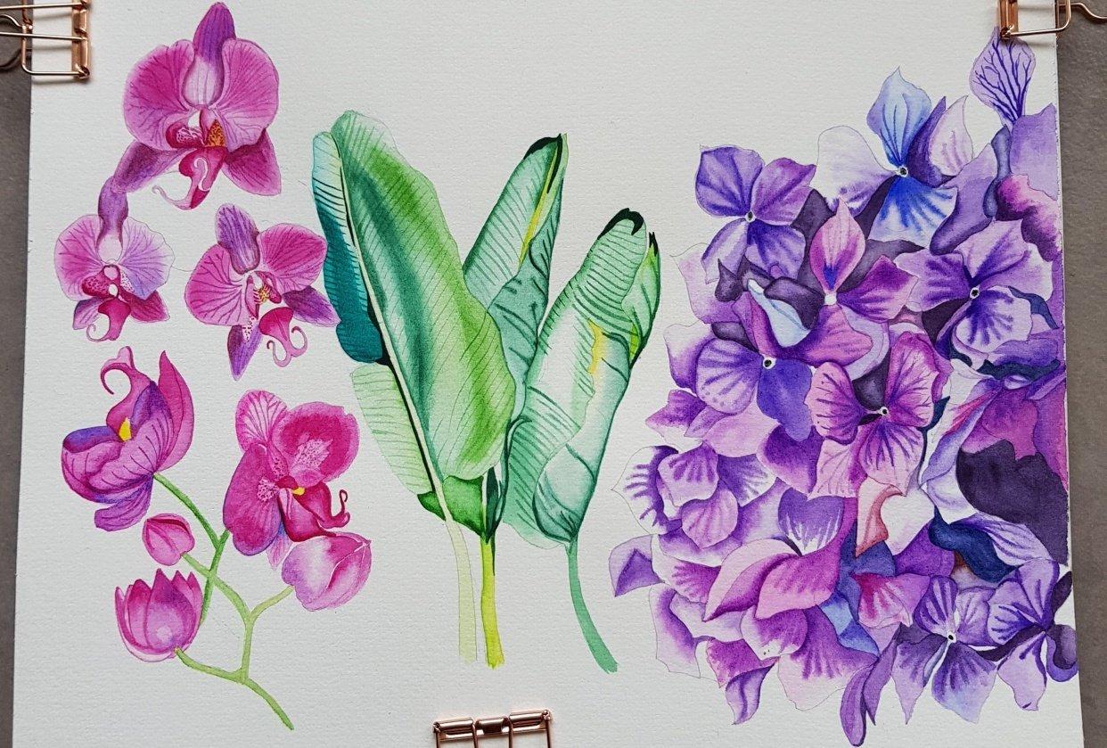Watercolor Hydrangea - student project
