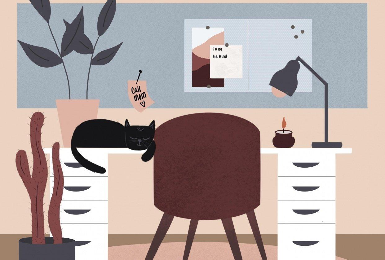 Black Cat - student project