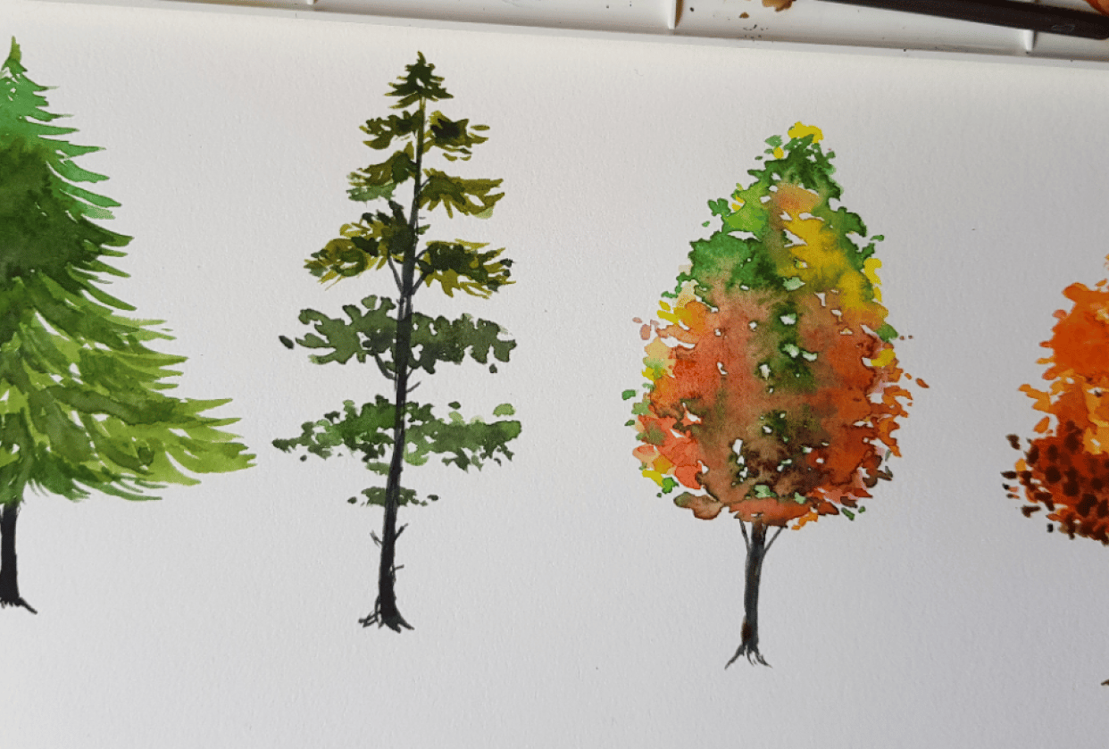 Autumn Trees - student project