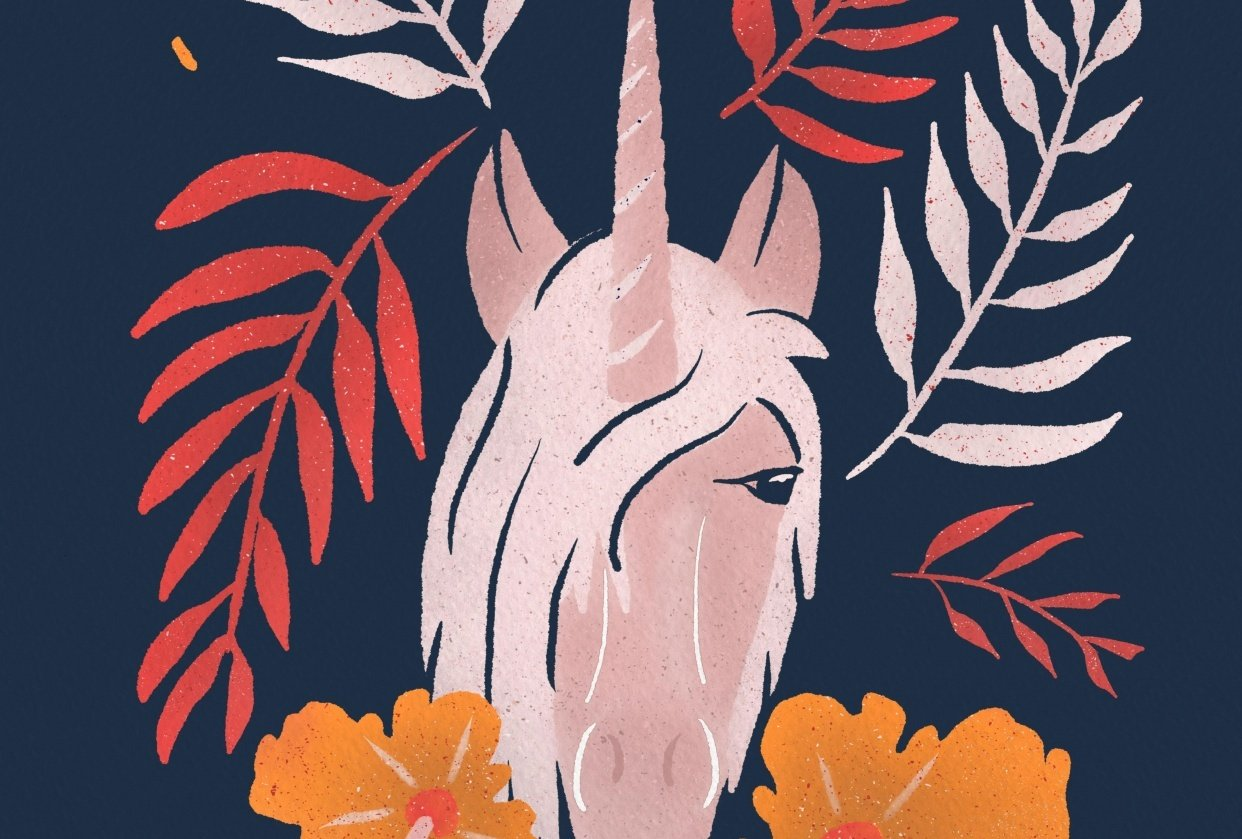 Unicorn - student project