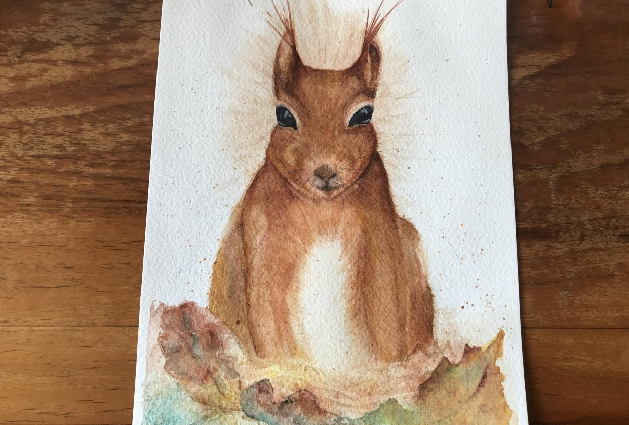 Sidney the little red squirrel - student project