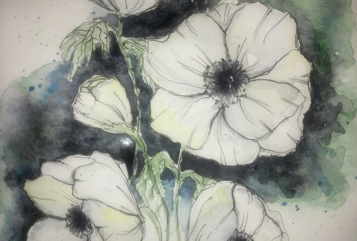 White watercolour & ink anemones - student project