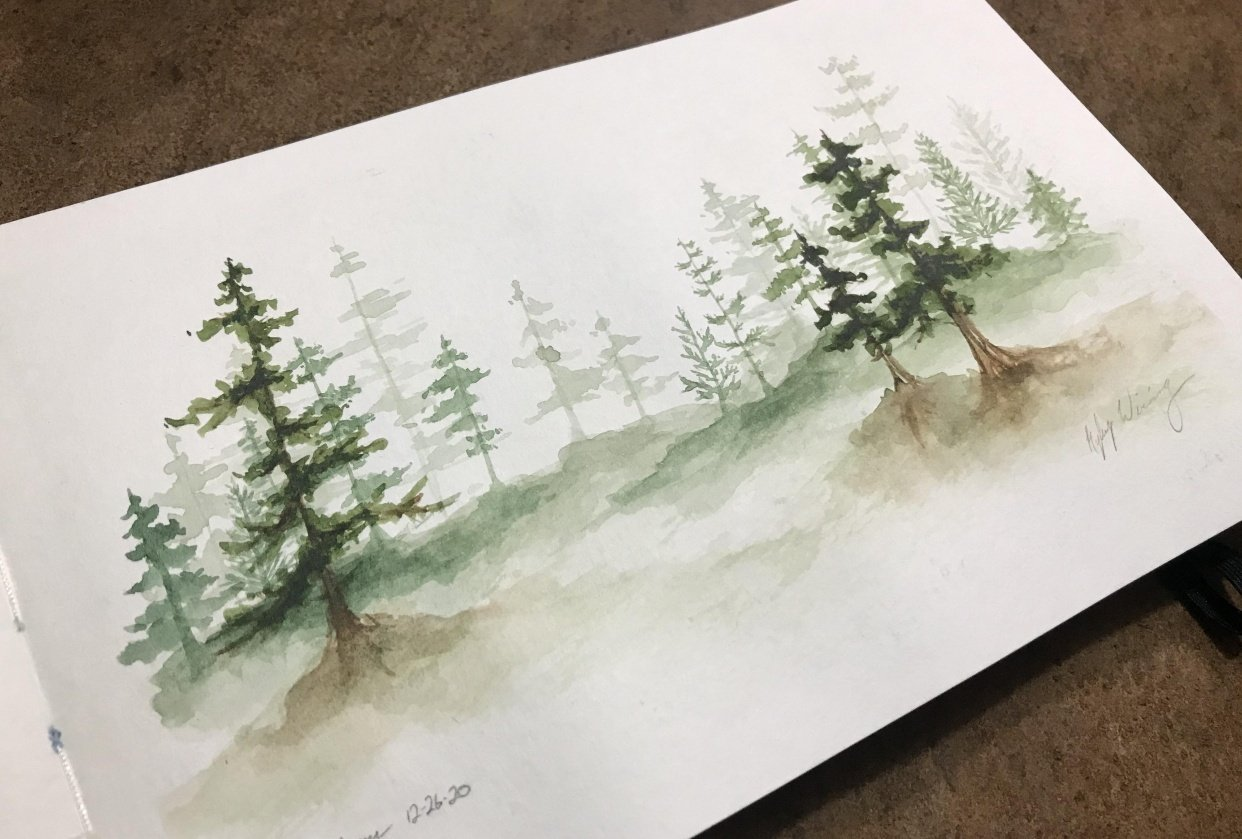 Pine Forest Scenes - student project