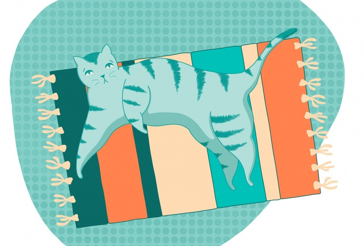 Teal Kitty - student project