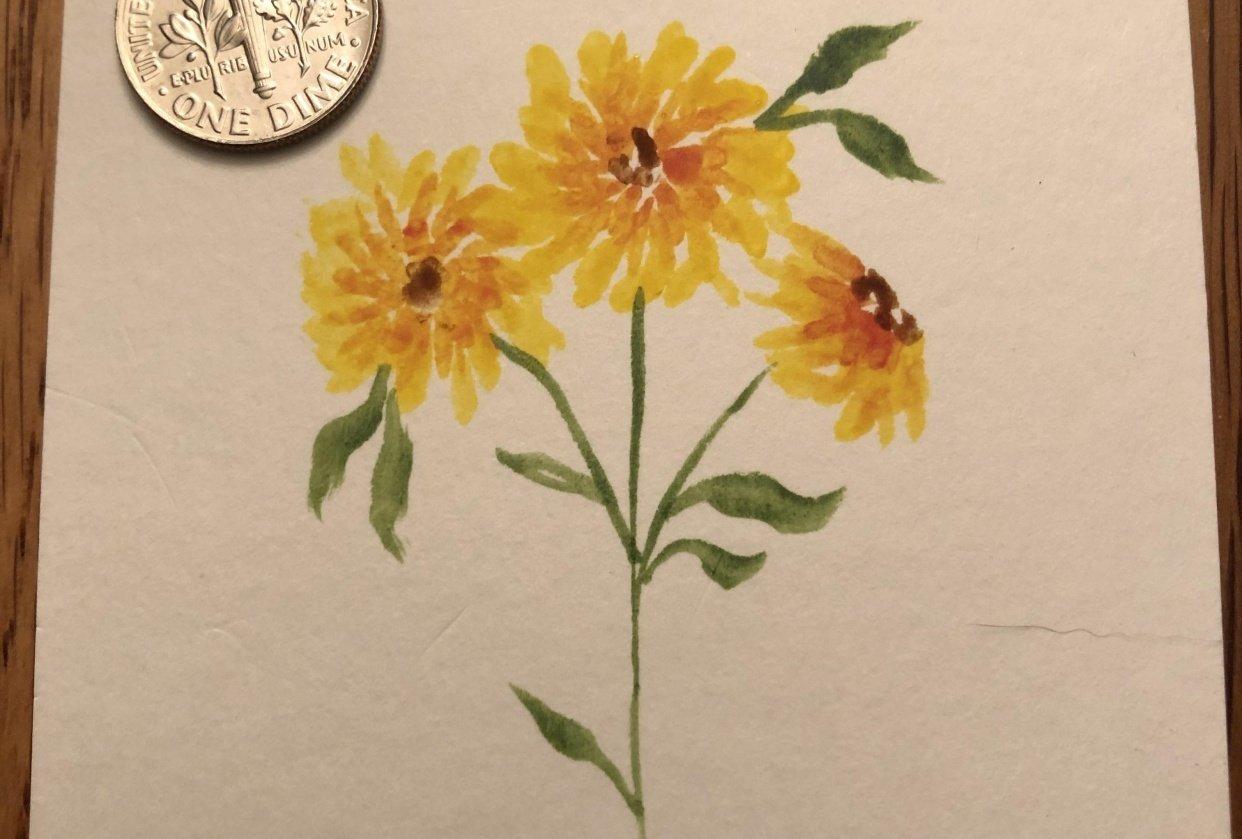 Miniature Marigolds - student project