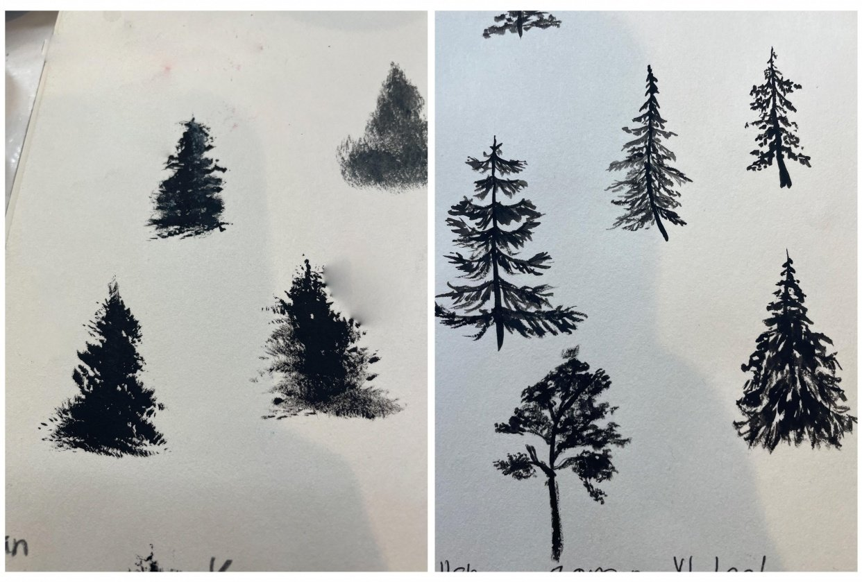Made a huge difference in my trees - student project