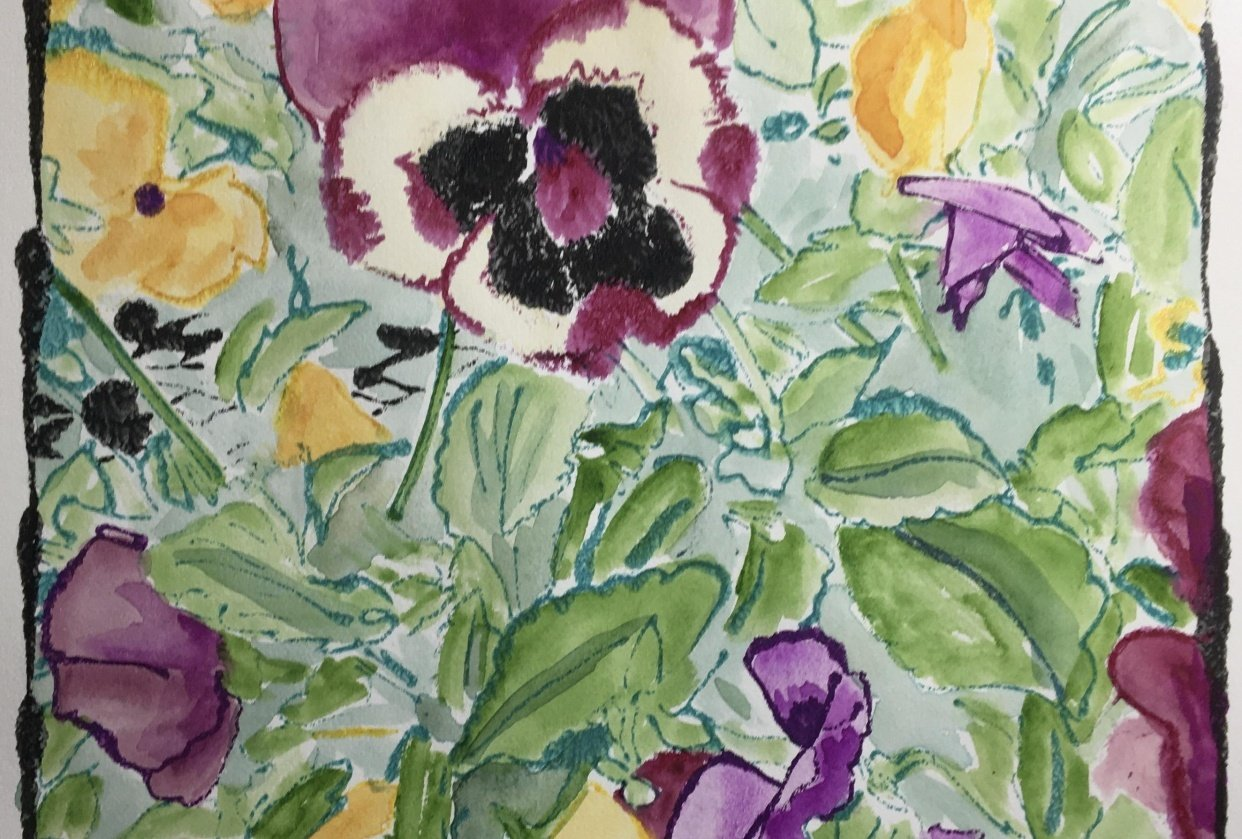 Pansy Garden - student project