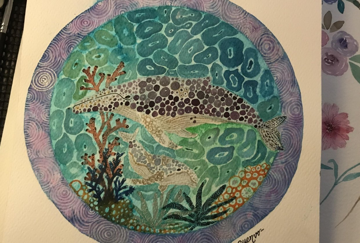 Humpback whale dad and baby - student project