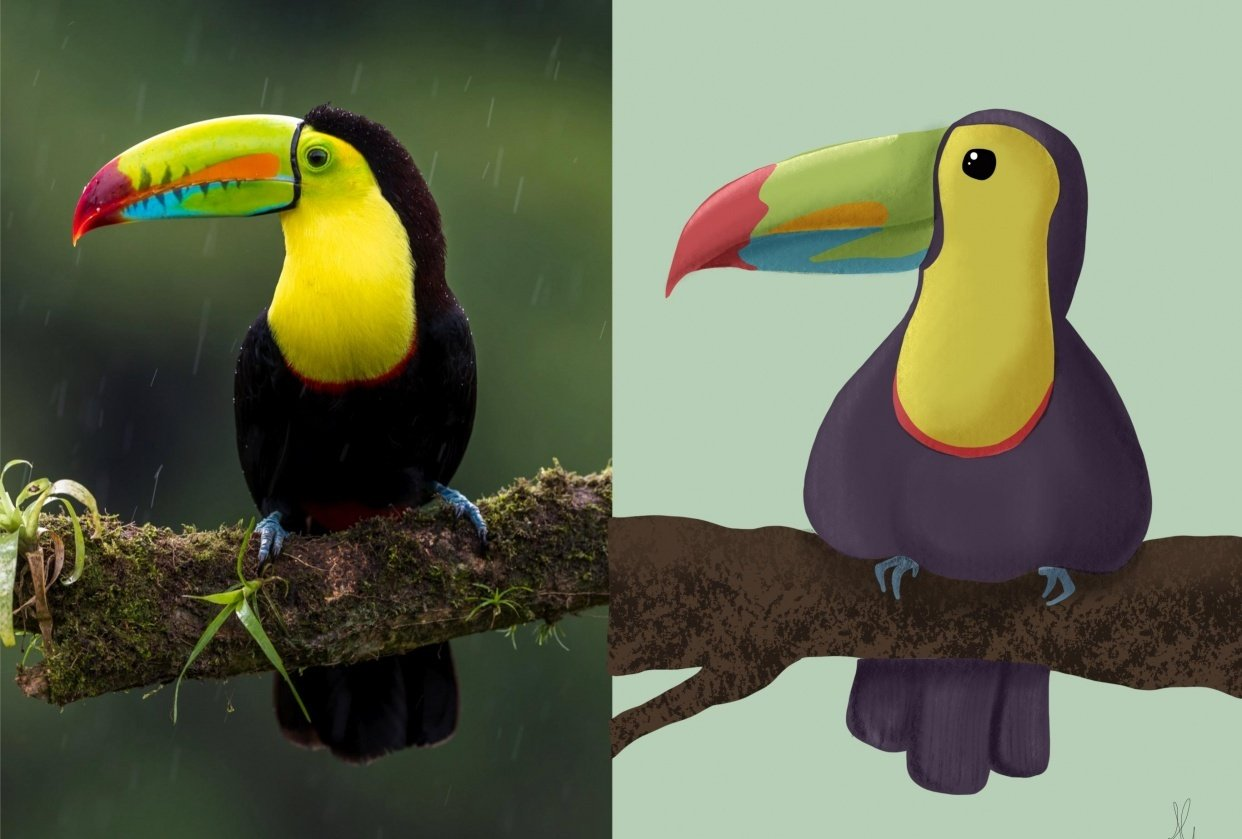 JG first attempt at Toucan - student project