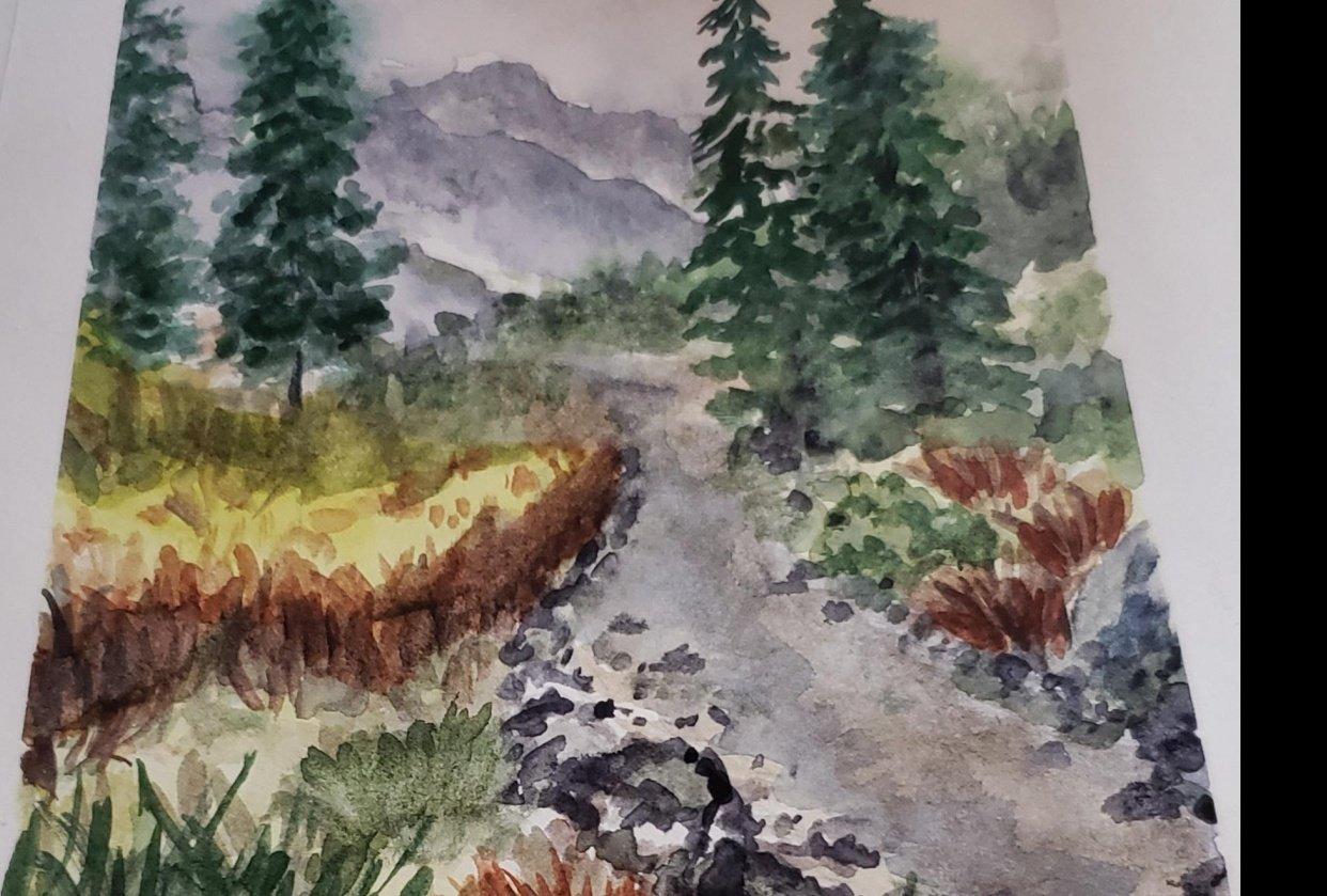landscape project - student project
