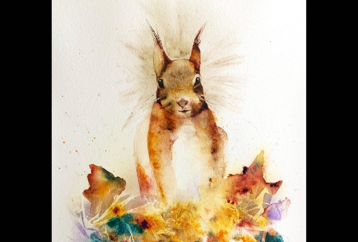 Sidney the Red Squirrel - student project