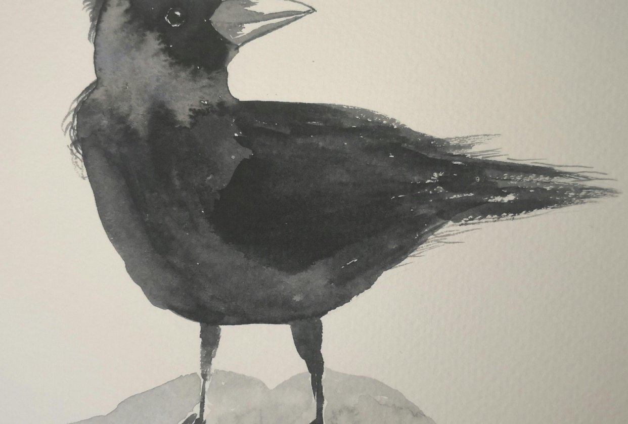 10 min crow - student project