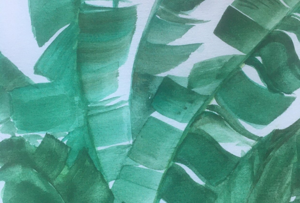 Banana leaves - student project