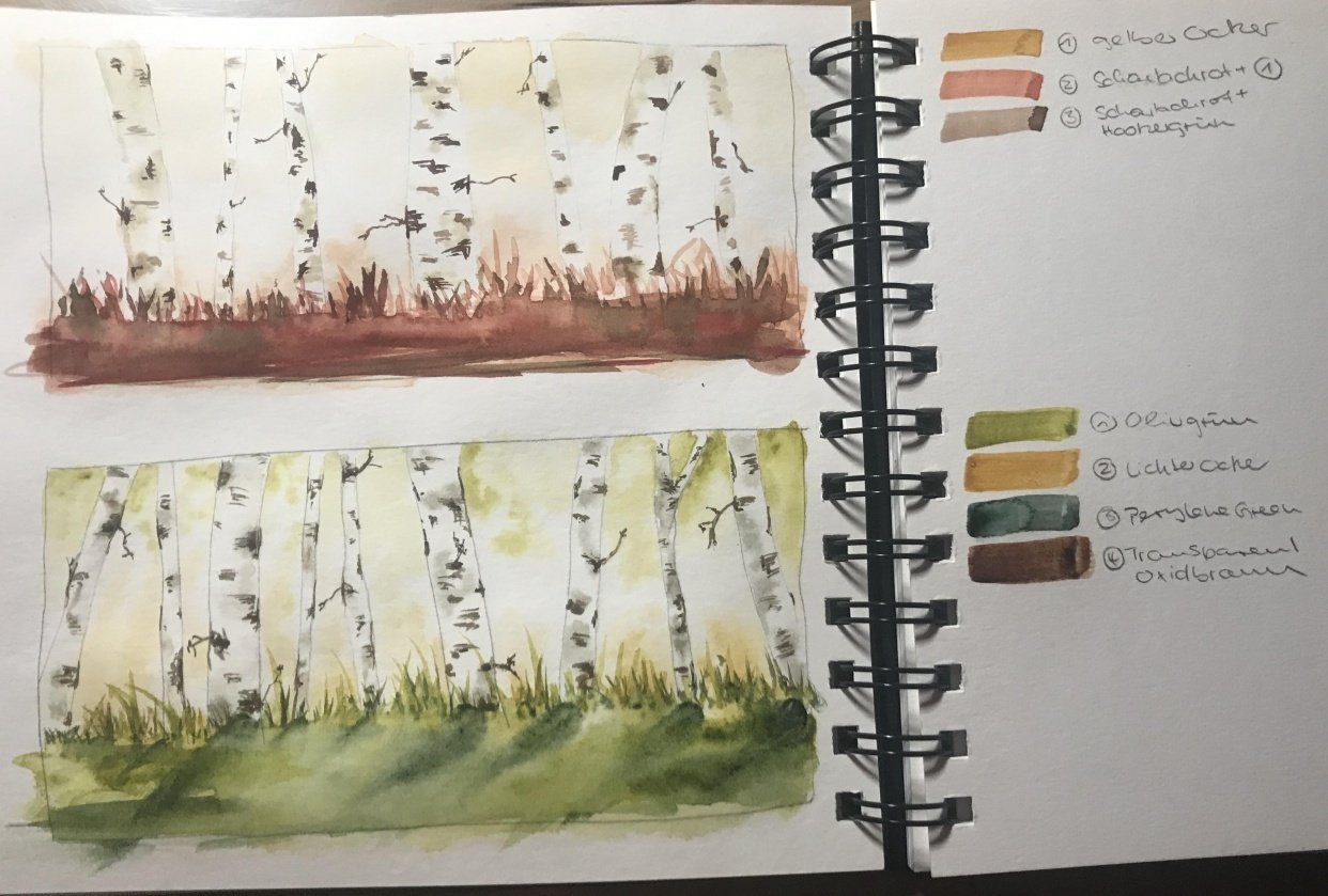 Birch trees - student project