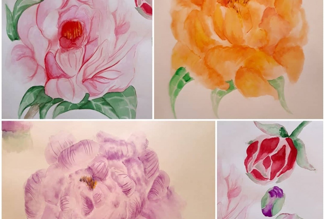 Peonies in full blossom - student project