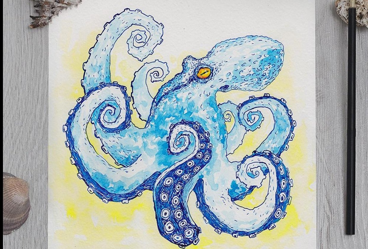 Octopus - student project