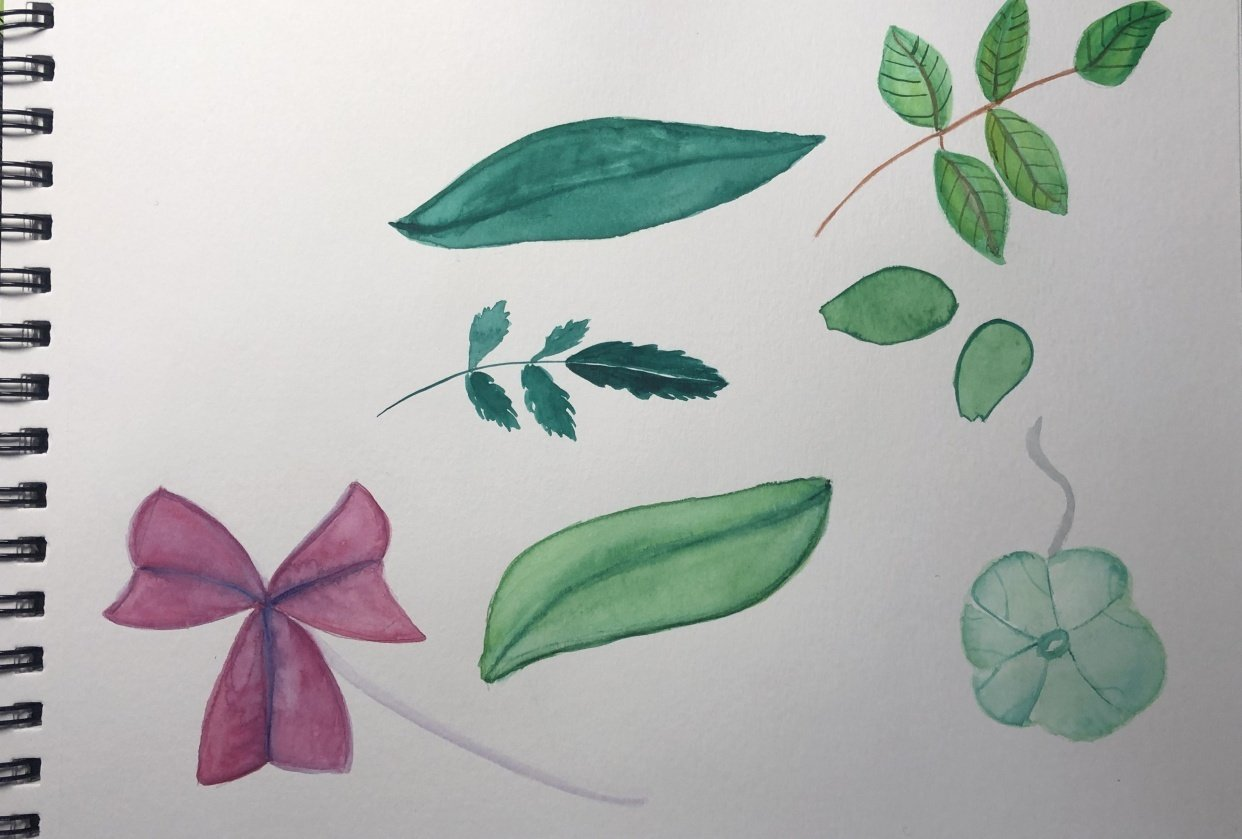 My own leaves - student project