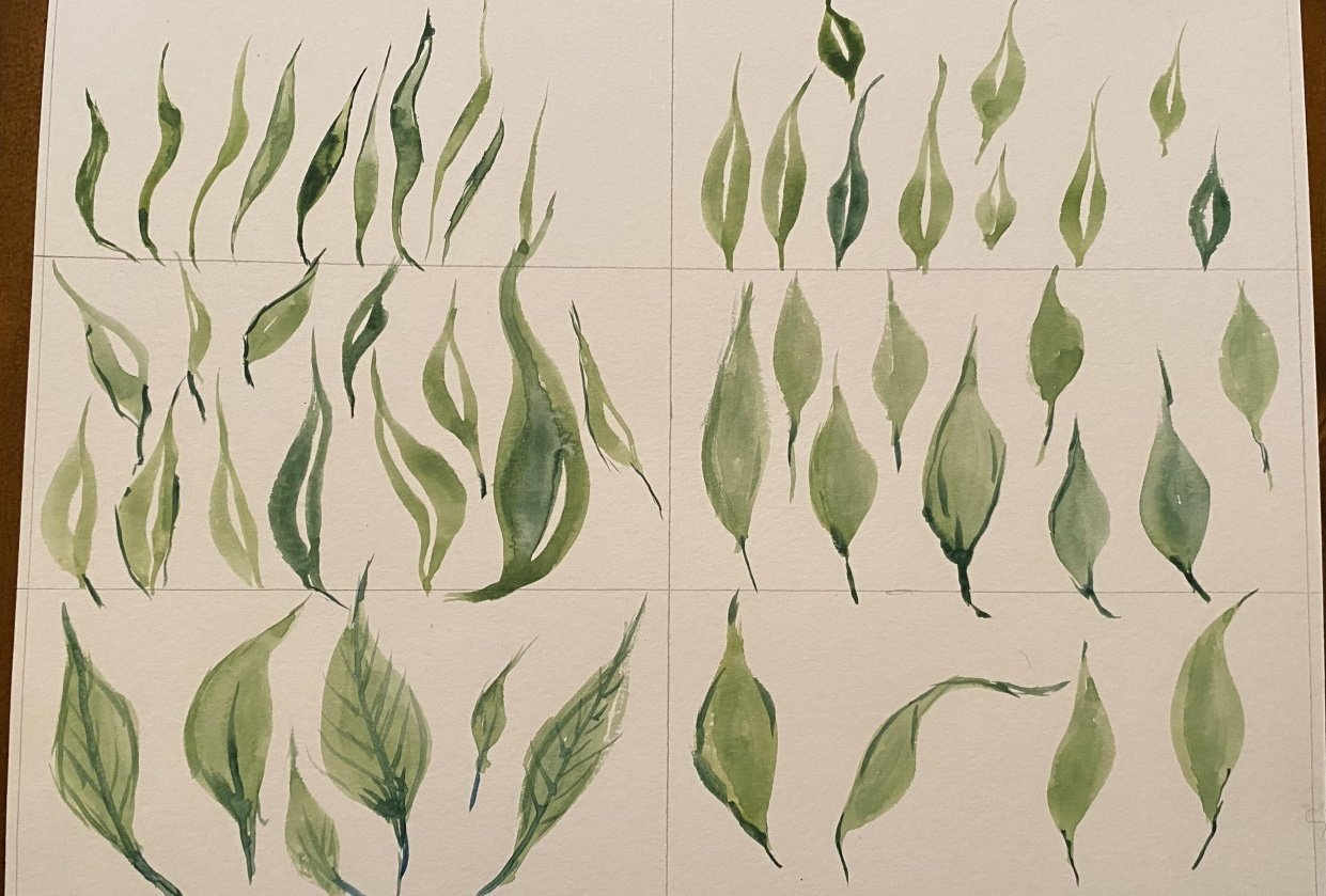 Leaf Practice - student project