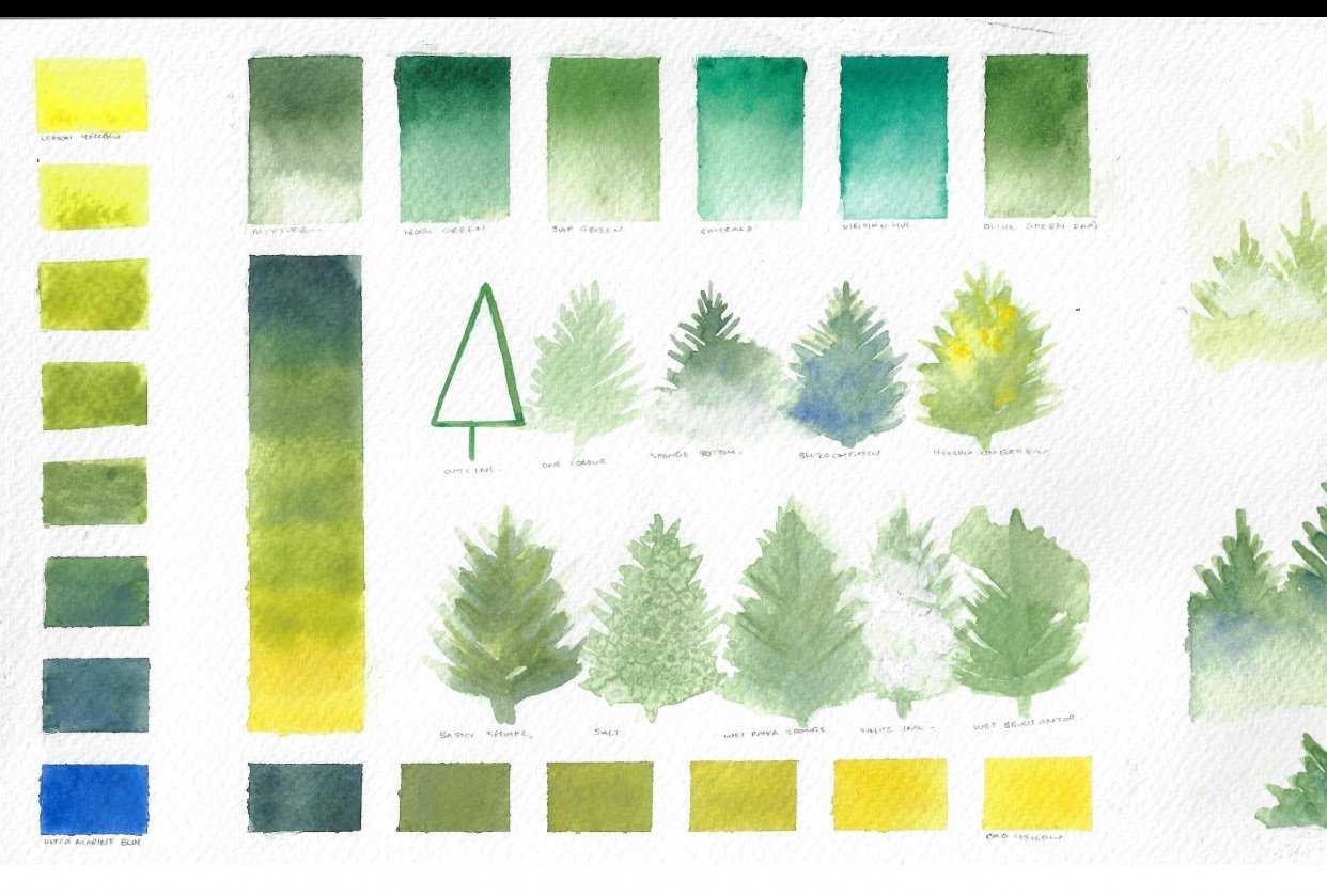 Watercolour Trees - student project