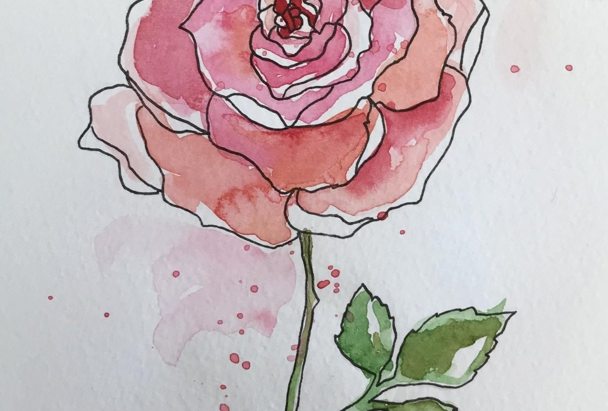 Watercolour roses - student project
