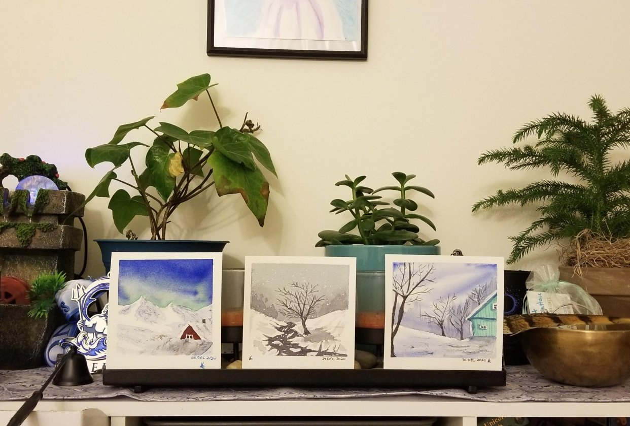 Lovely winter scenes - student project