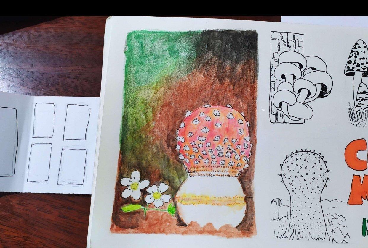 Cogumelos - student project