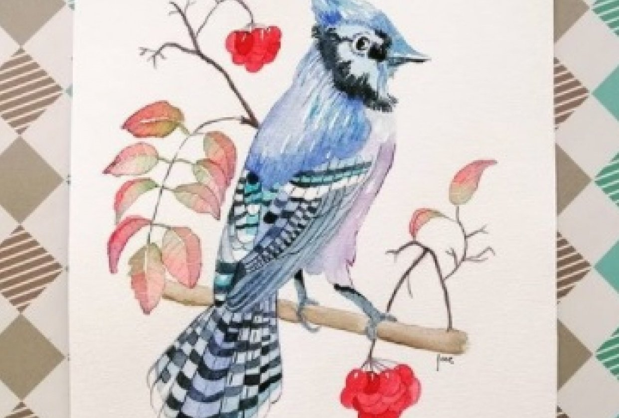 Bluejay - student project