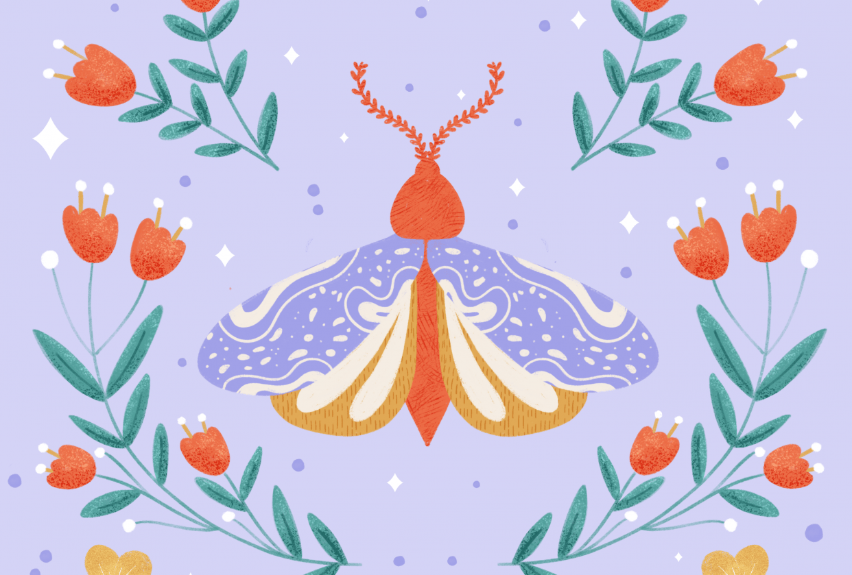 Folksy Moth - student project