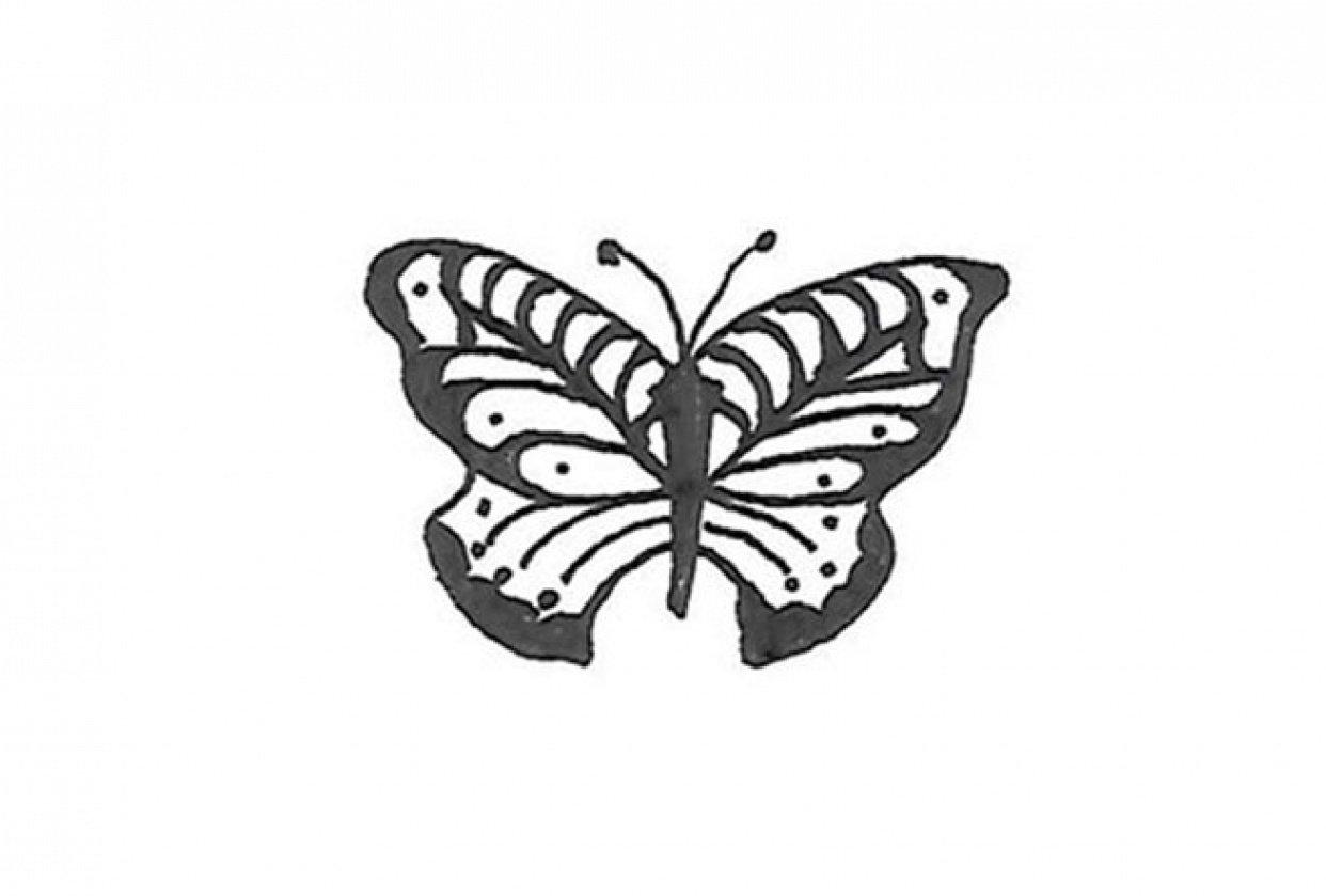 Stylized Butterflies - student project