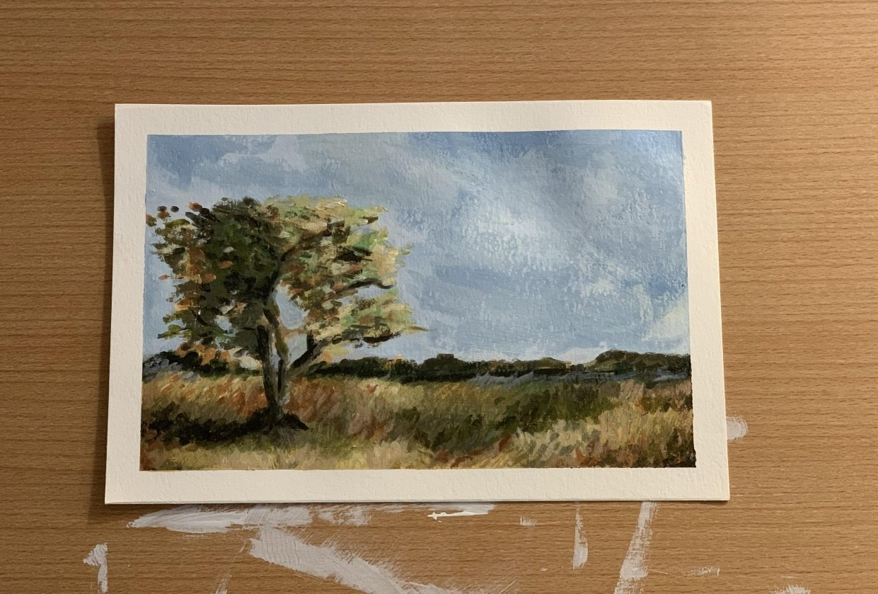 Tree in field - student project