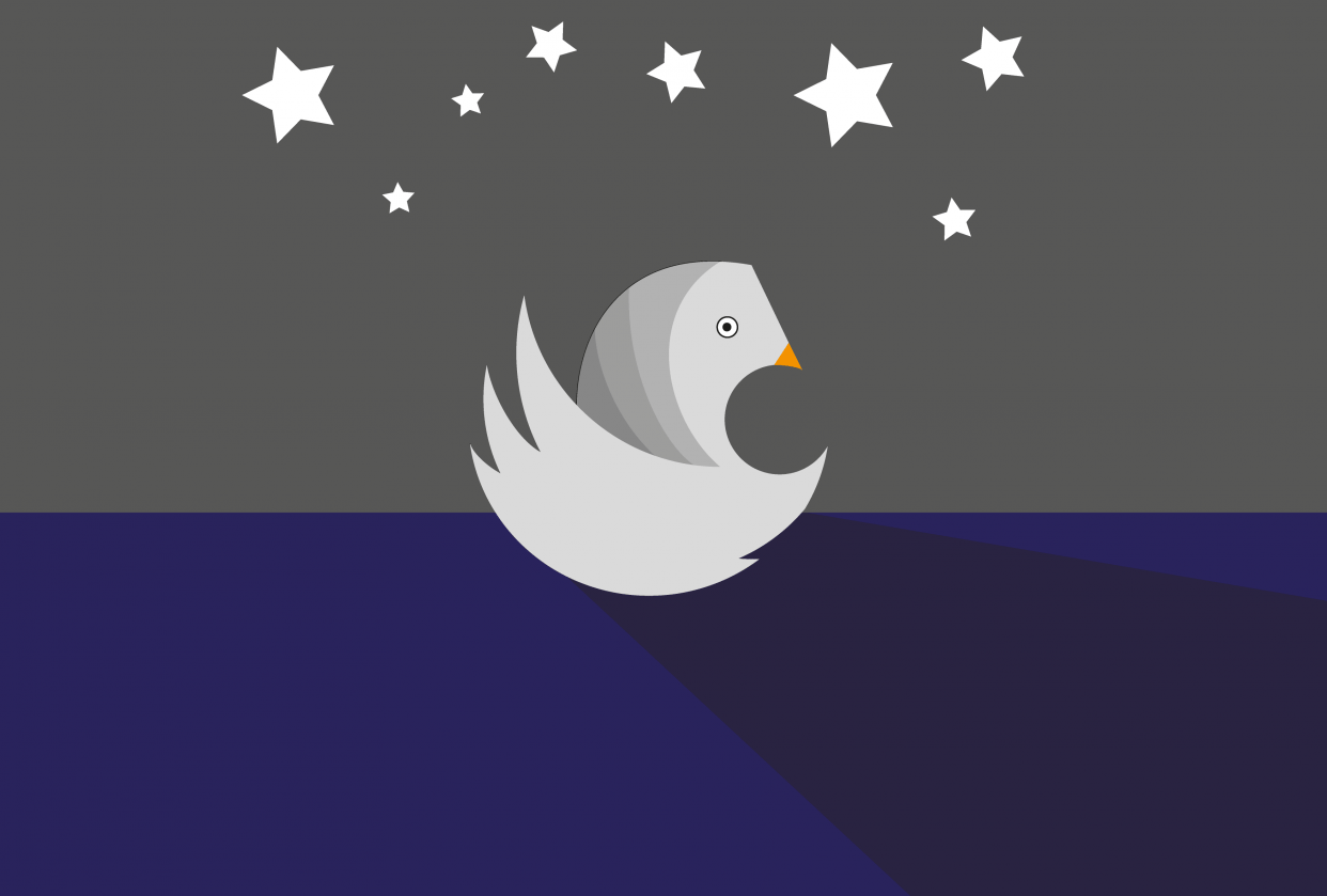 Illustrator Projects - student project