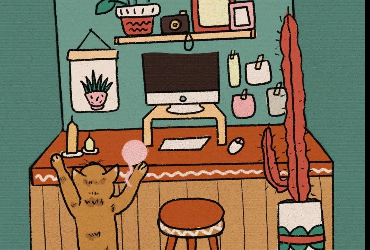 Procreate Cat Animation - student project