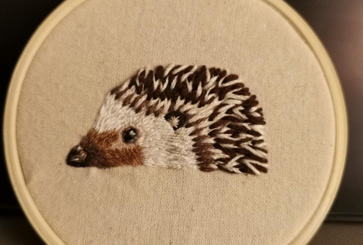 Hedgehog - student project